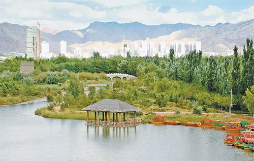 乌海植物园秋景. (石历增 摄)