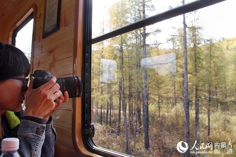 游客在小火车上拍摄窗外的风景