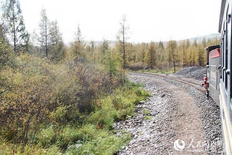 小火车上看风景