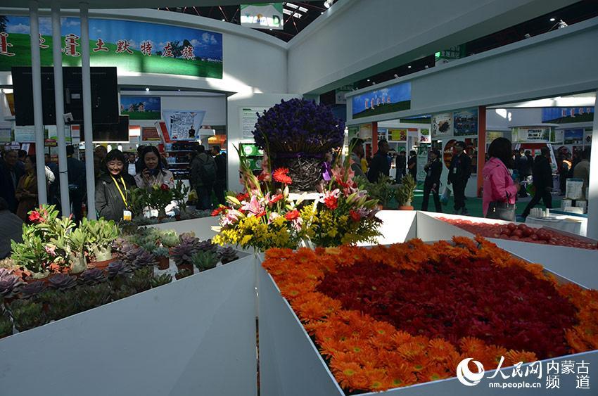 鲜花展示区