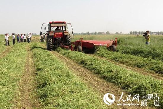 """是承接内蒙古自治区或全国农博会的重要场所;国际农博园在《规划》中勾勒的功能定位则是我国西部地区乃至""""一带一路""""沿线重要的农牧业综合展示交易中心和农牧业成果展示窗口"""