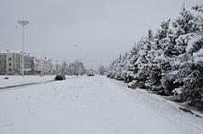 内蒙古呼伦贝尔地区普降大雪
