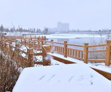 内蒙古多地迎来初冬降雪